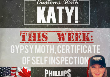 Gypsy Moth, Certificate of Self Inspection